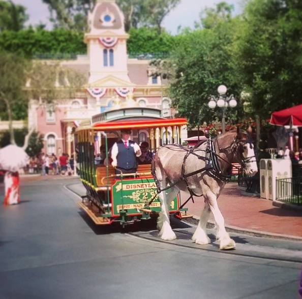 Travelocity-Orlando-2
