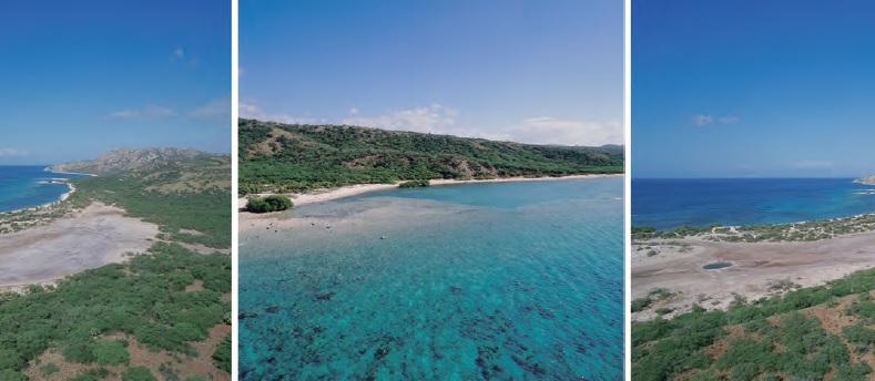 playas_bani