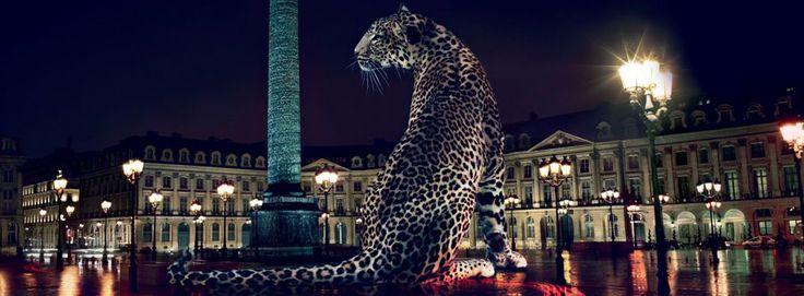 La pantera y la parisiense Place Vendôme son dos referencias emblemáticas del mundo Cartier.