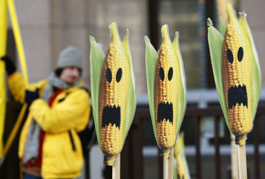 Activistas de Greenpeace protestan contra Monsanto.