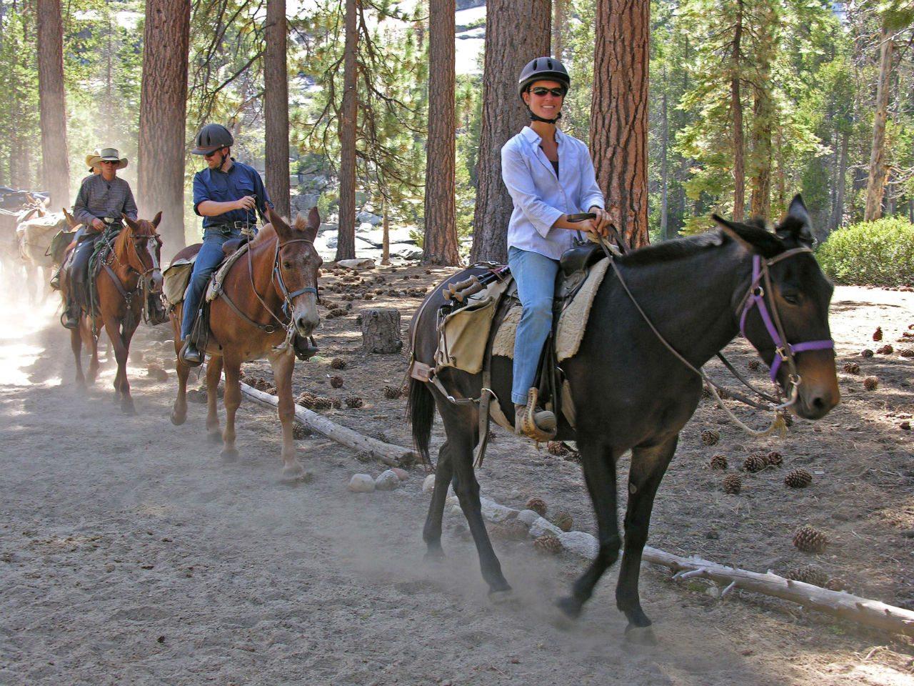 Paseo a caballo en el valle de Yosemite