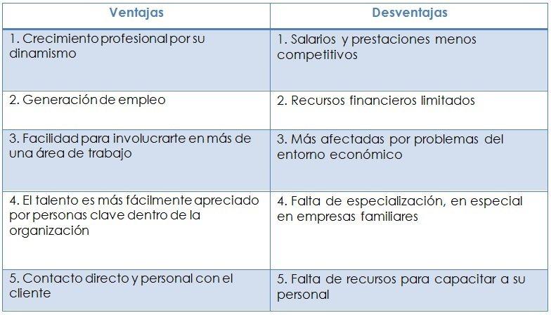 grafico_ventajas_desventajas_pymes_bueno