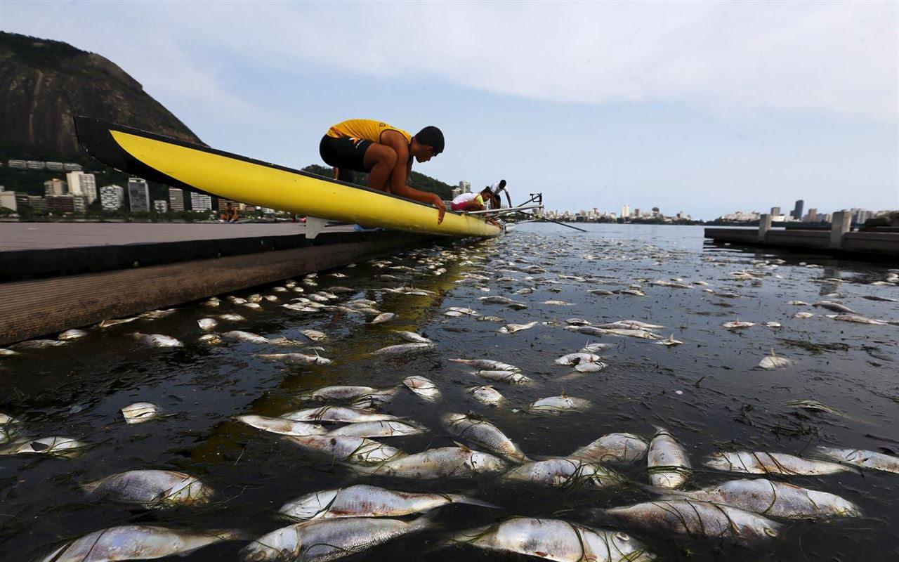 La contaminación es el principal problema en la Bahía de Guanabara (Foto: Reuters)