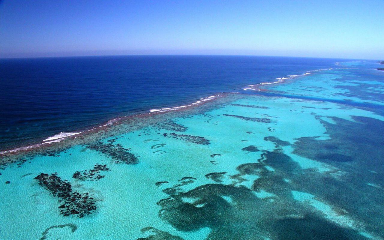 Isla d2e Roatán Islas de la Bahía