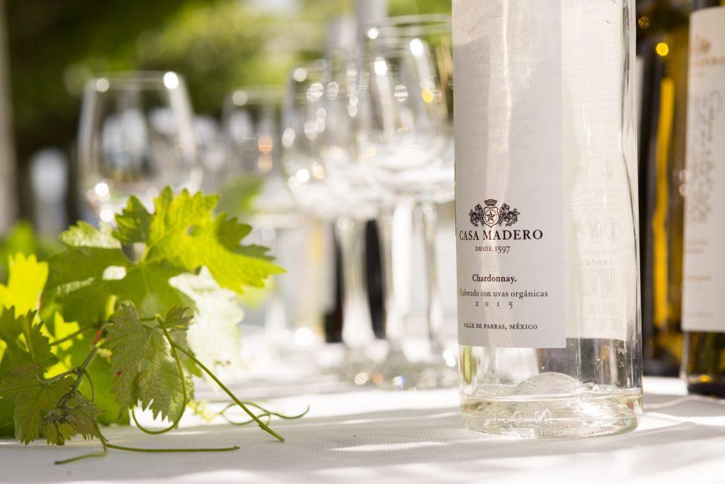 Casa Madero Chardonnay uvas orgánicas