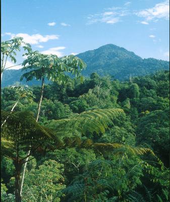 Zona Turística Caribe Sur en Costa Rica