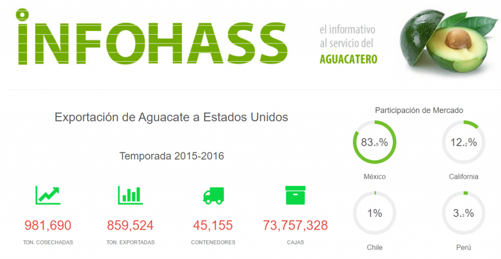 Aguacate. Fuente: InfoHass