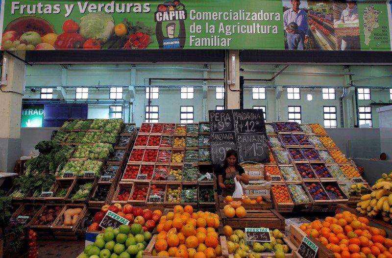 Tomate mexicano llegará a mesas de Europa, Rusia, Japón y China