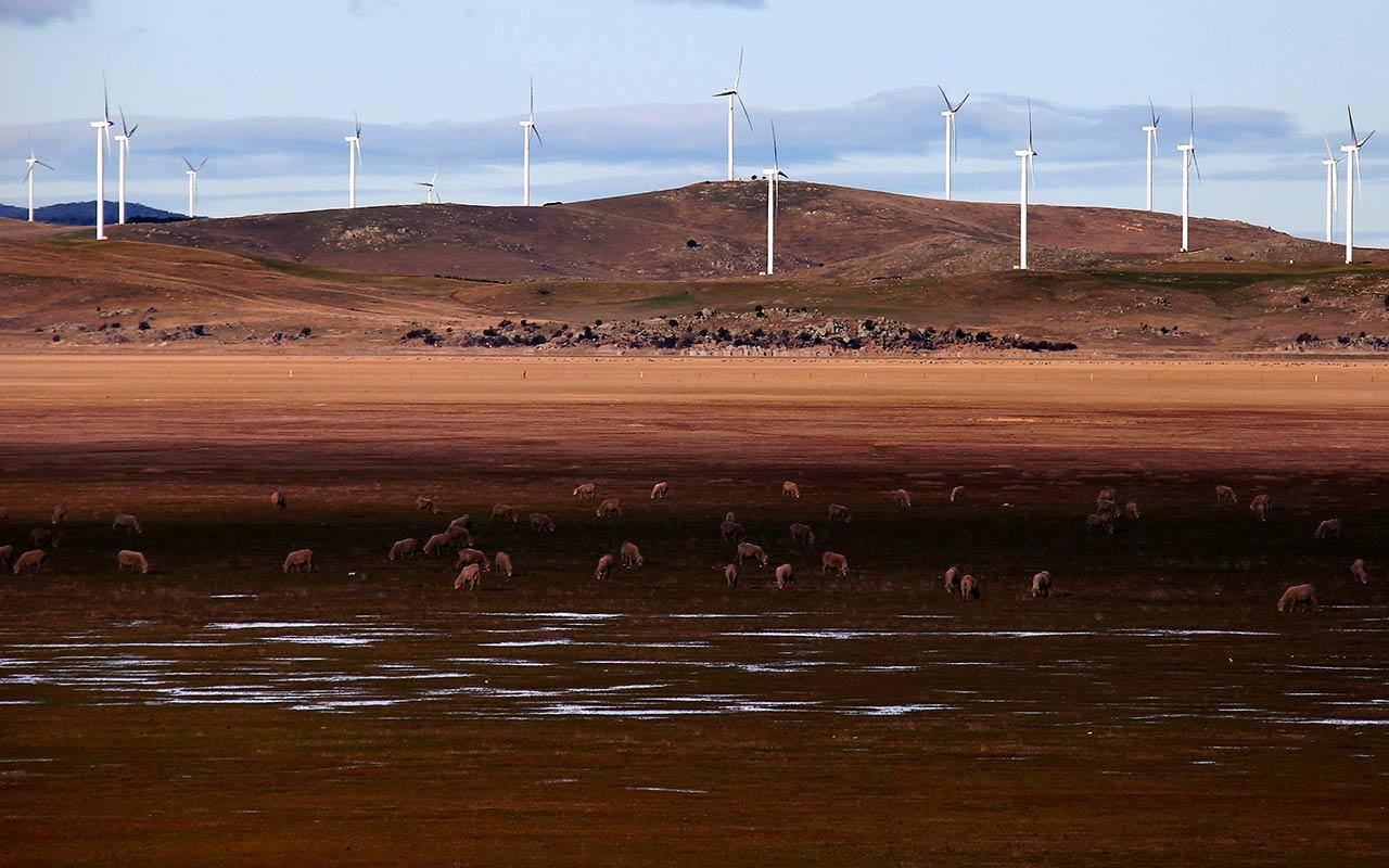 Selección Forbes 2016: El proyecto de 1,200 mdd que electrificará a México con viento