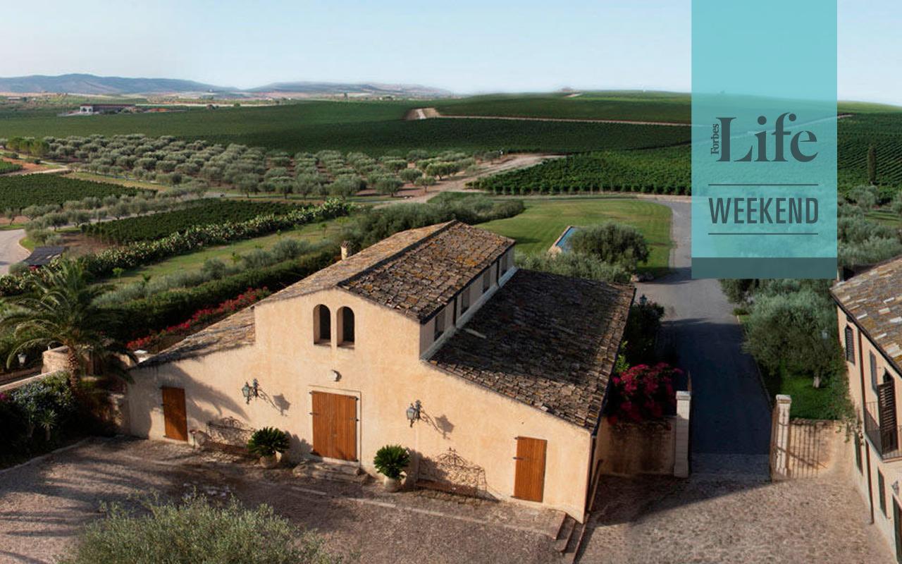 El viñedo familiar que se convirtió en un imperio de vinos italianos
